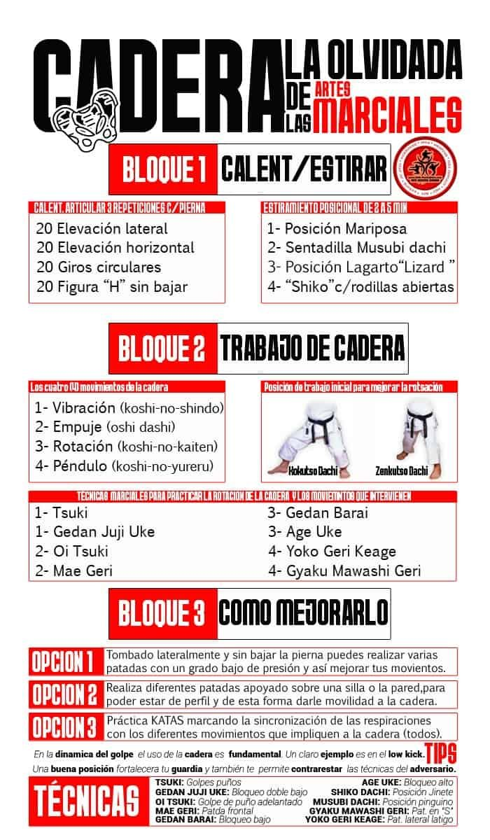 Fichas CADERA
